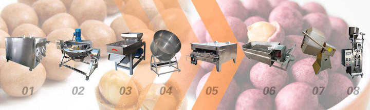 complete coated peanuts processing line